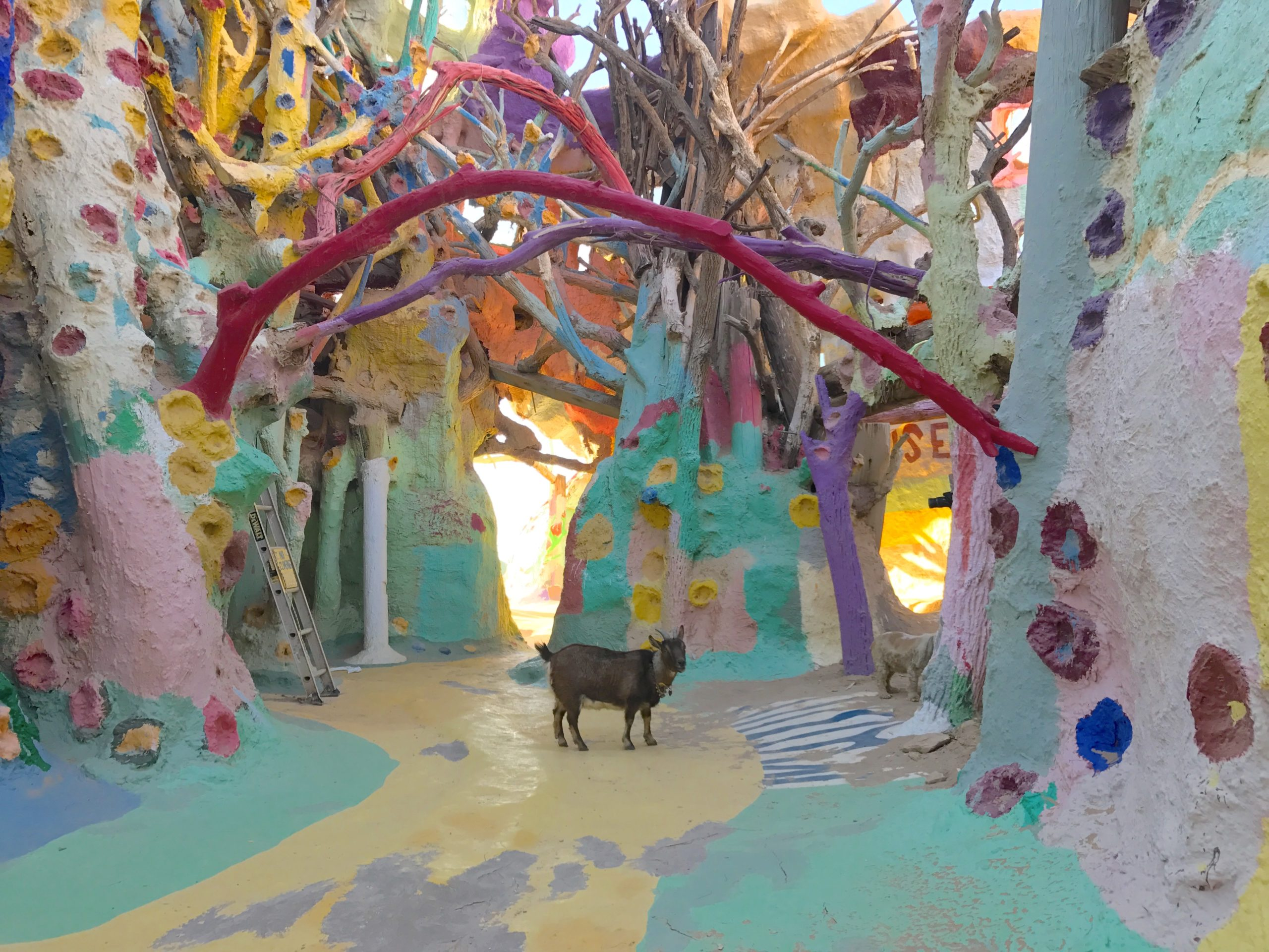 Colorful art walls with goat at Salvation Mountain