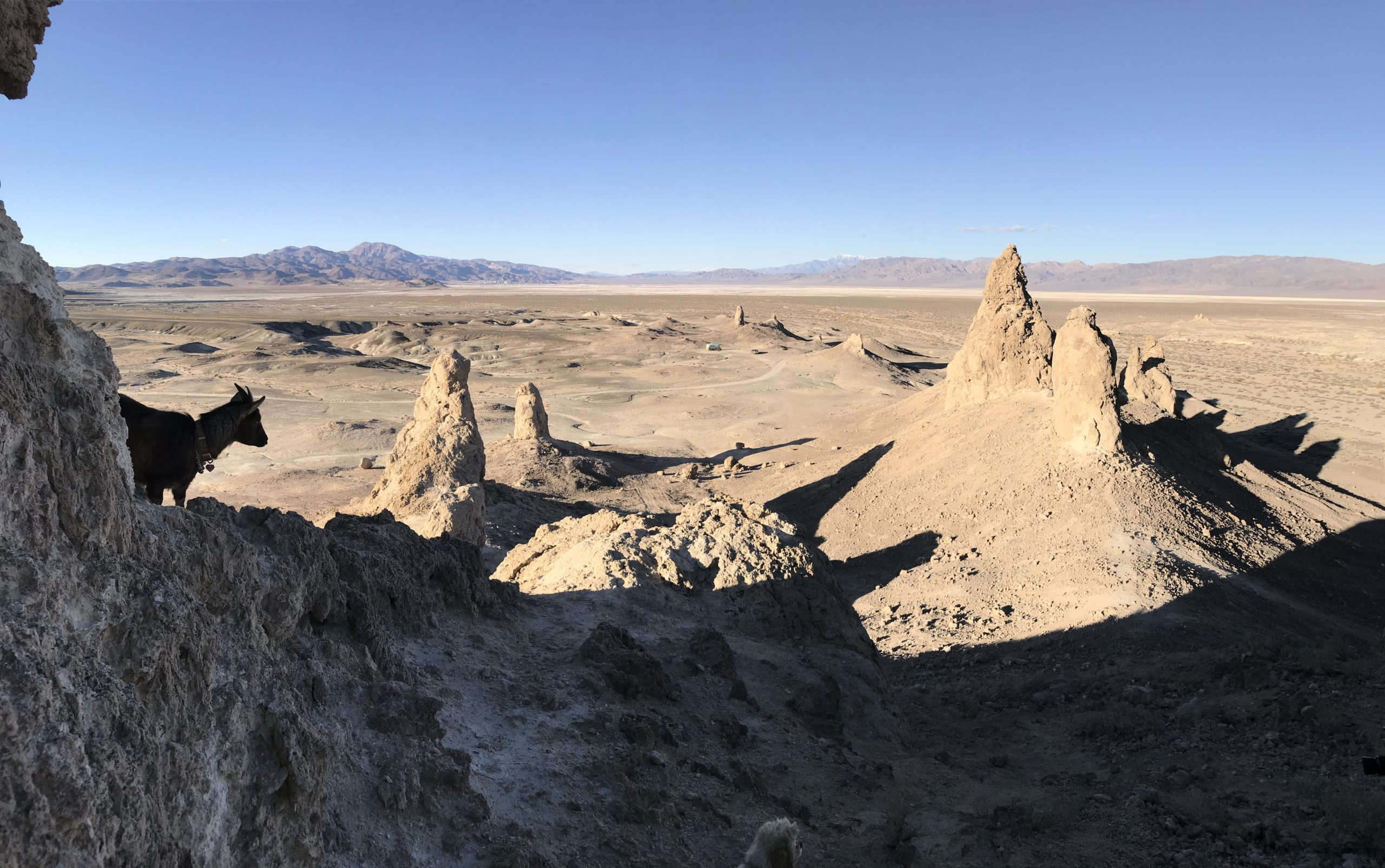 Rocky formations from mountain at Trona Pinnacles with goat in left corner