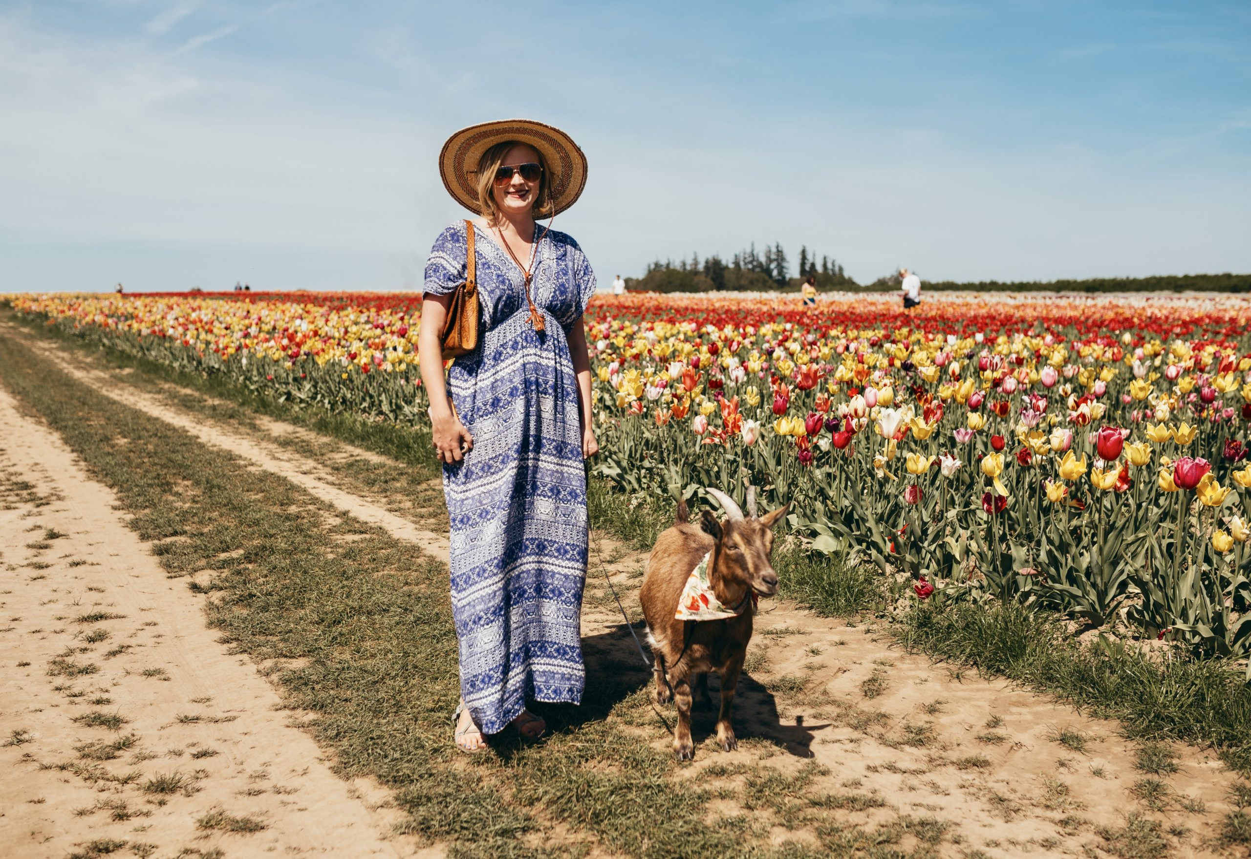 Woman in dress standing in tulip field with goat