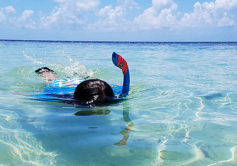 A snorkeler swimming on the surface of the ocean.