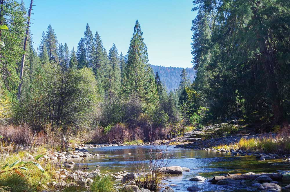 Yosemite is a great place for a picnic, and views like this serene setting are common.
