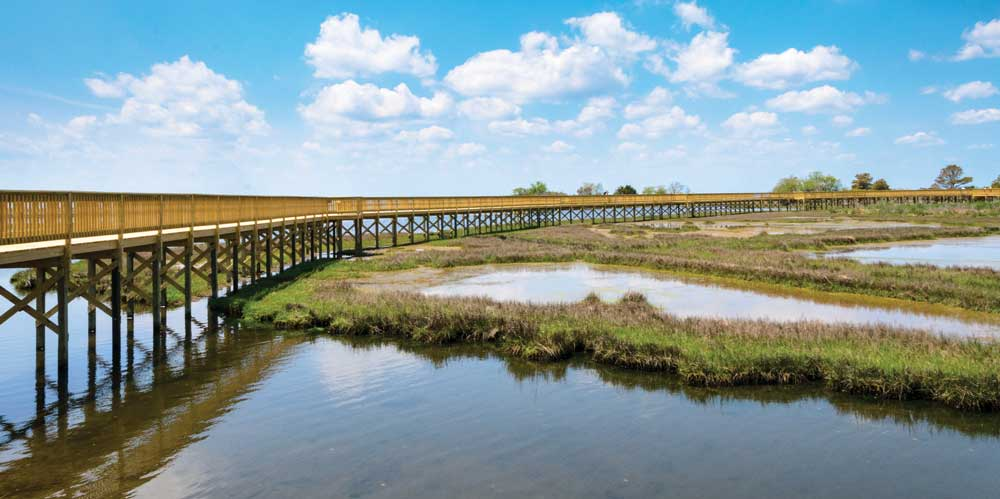 Rather than Ferris wheels and midway games, this boardwalk on The Life of the Marsh Nature Trail in Assateague Island National Seashore offers the sights and sounds of the surrounding saltwater marshes.