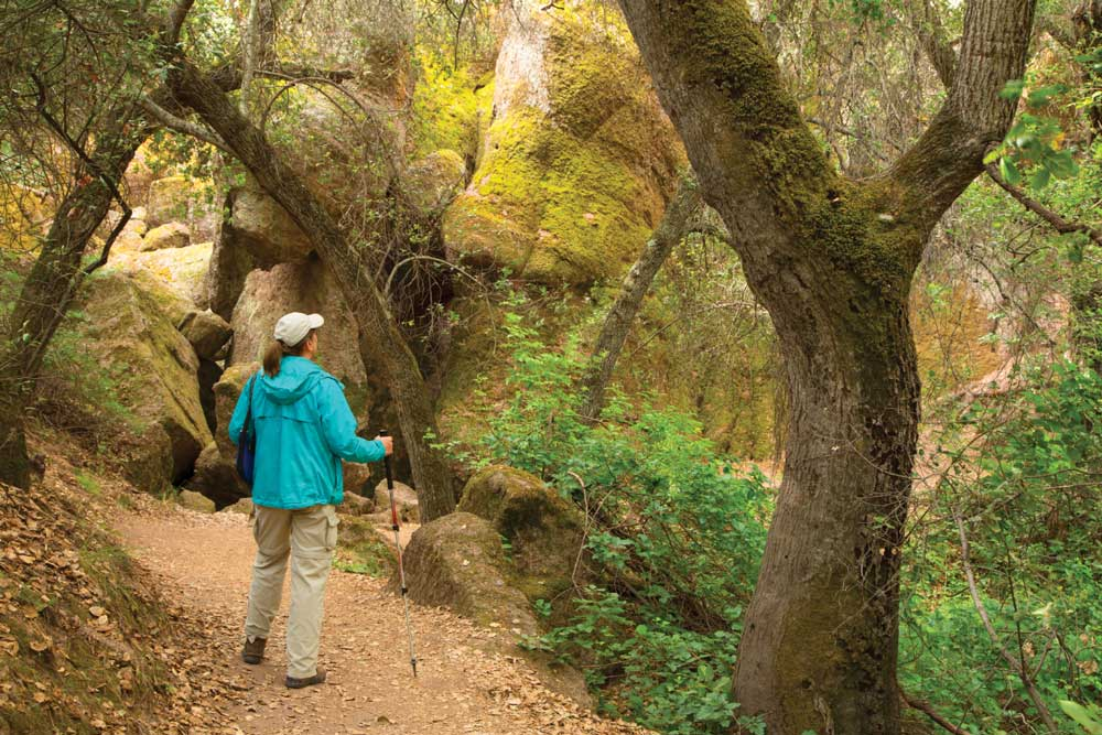 The challenging hike to High Peaks at Pinnacles NP results in a good chance for condor sightings.