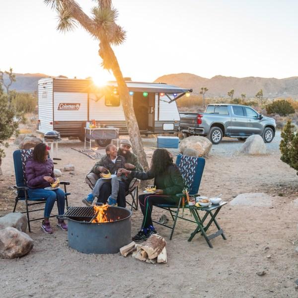 Friends at a Campfire