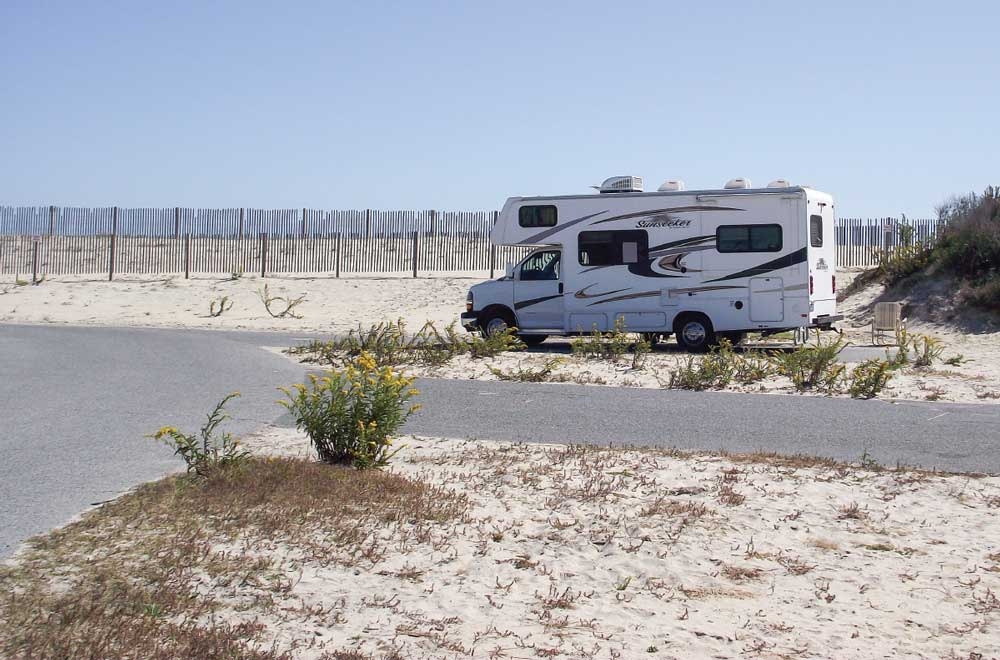 Campsites on Assateague back up against the dunes, just steps from the Atlantic.