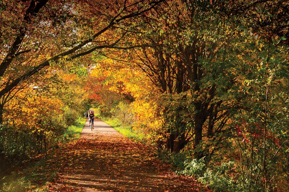 A cyclist rides through fall colors on the Richland B&O Trail in Ohio