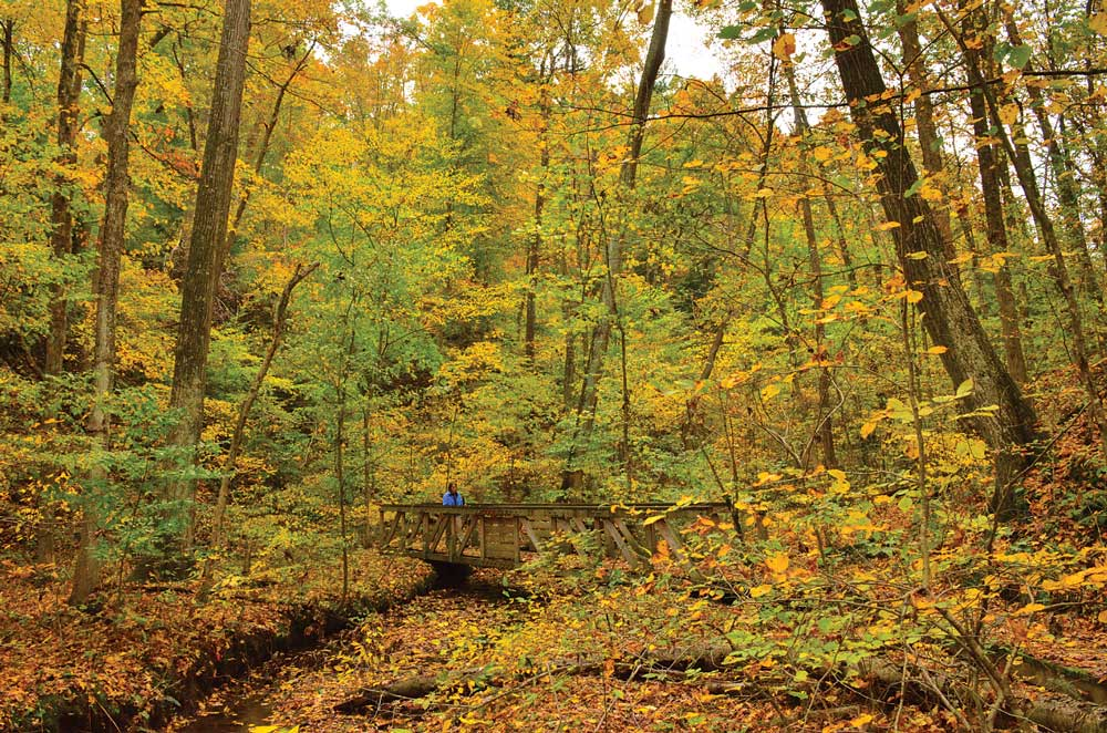 A hiker shuffles through the fall leaves over a bridge on Mohican State Park in Ohio