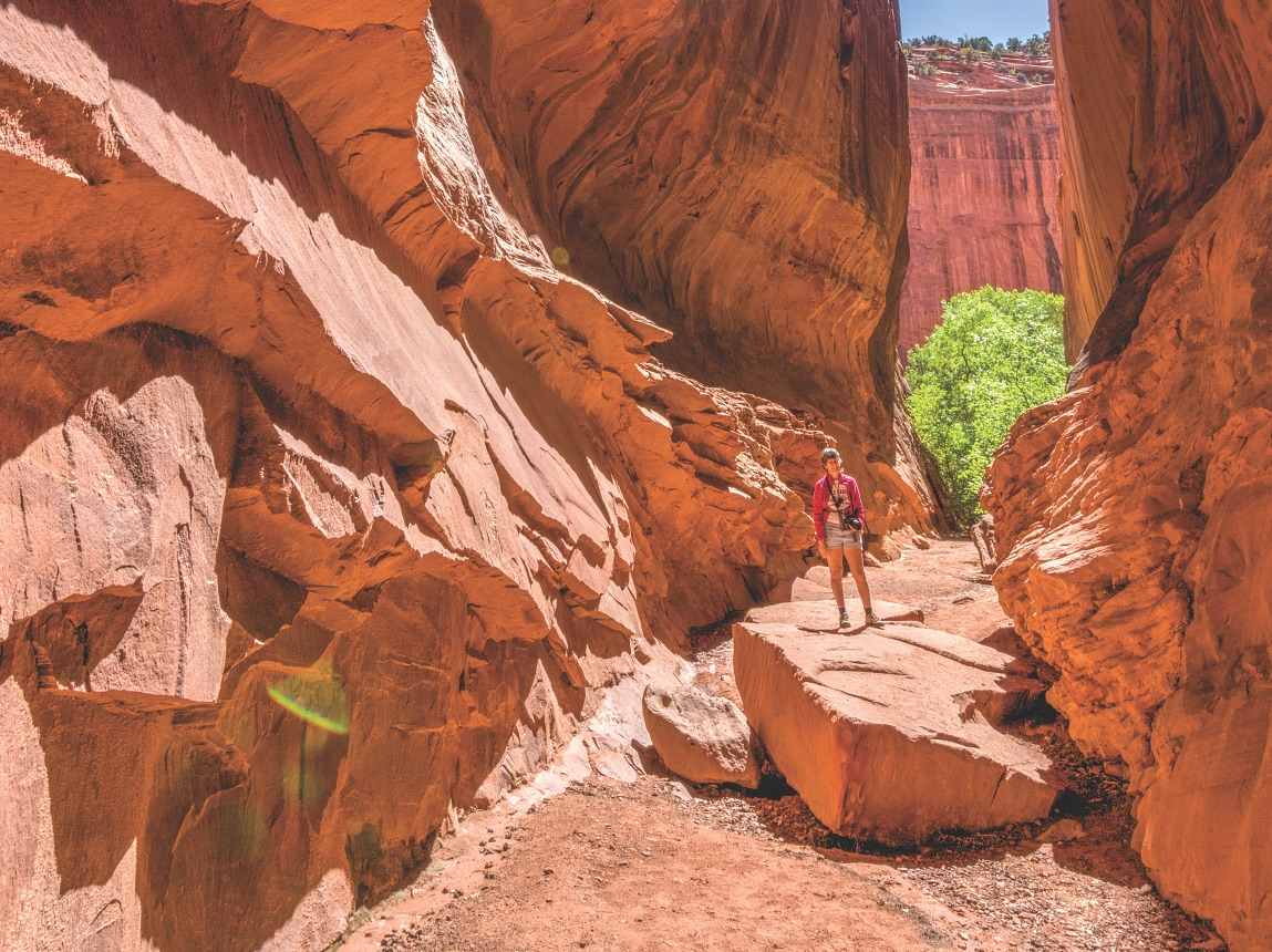 Utah's Red Rock Country is amazing for campers and hikers