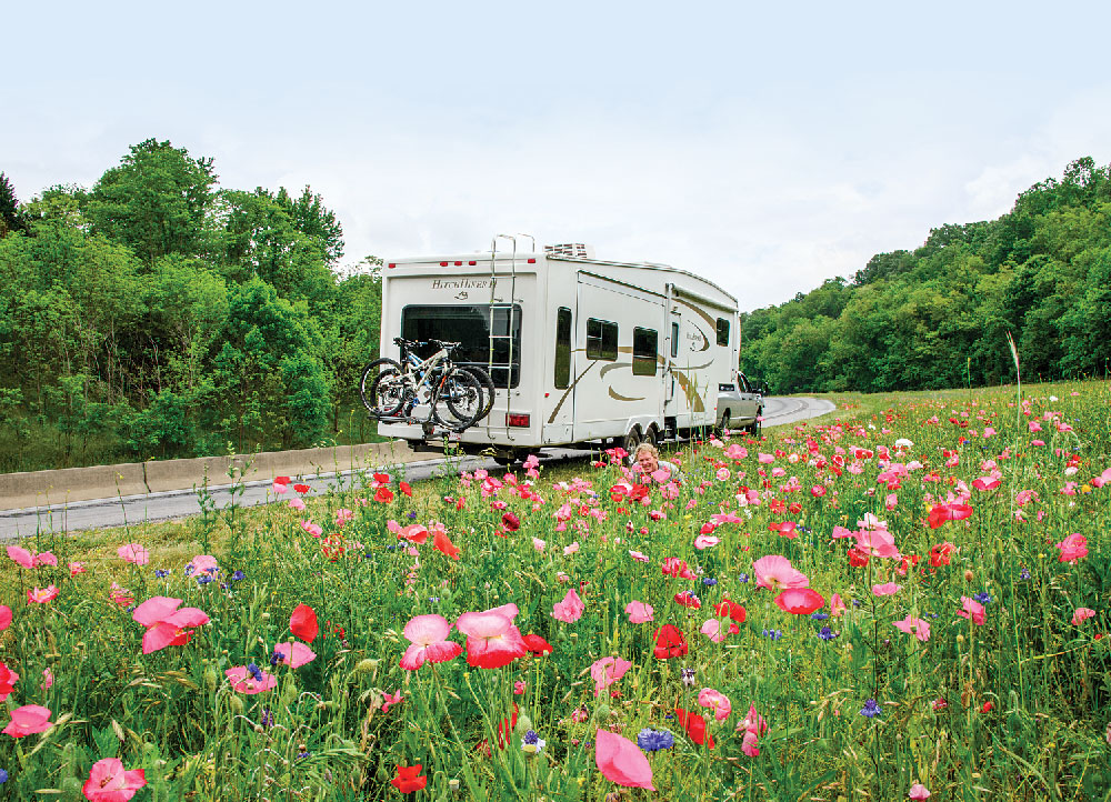 From Interstate 40 west of Asheville, a field bursting with pink and blue wildflowers presented an ideal spot to pull off the highway and take some photos.
