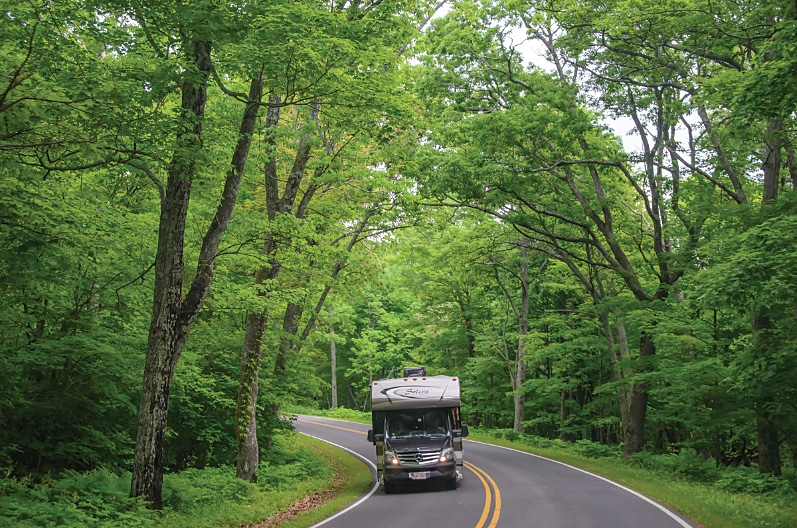 Driving under a green canopy on the Blue Ridge Parkway.