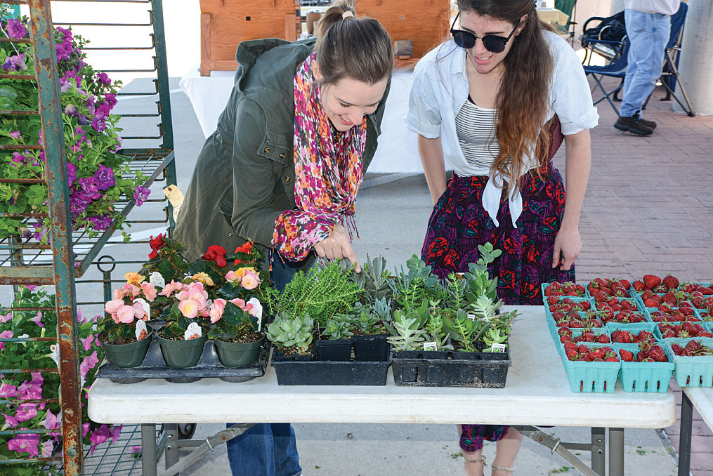 Shoppers look for flowers and homegrown goods at Columbia's seasonal farmer's market at Clary-Shy Community Park.