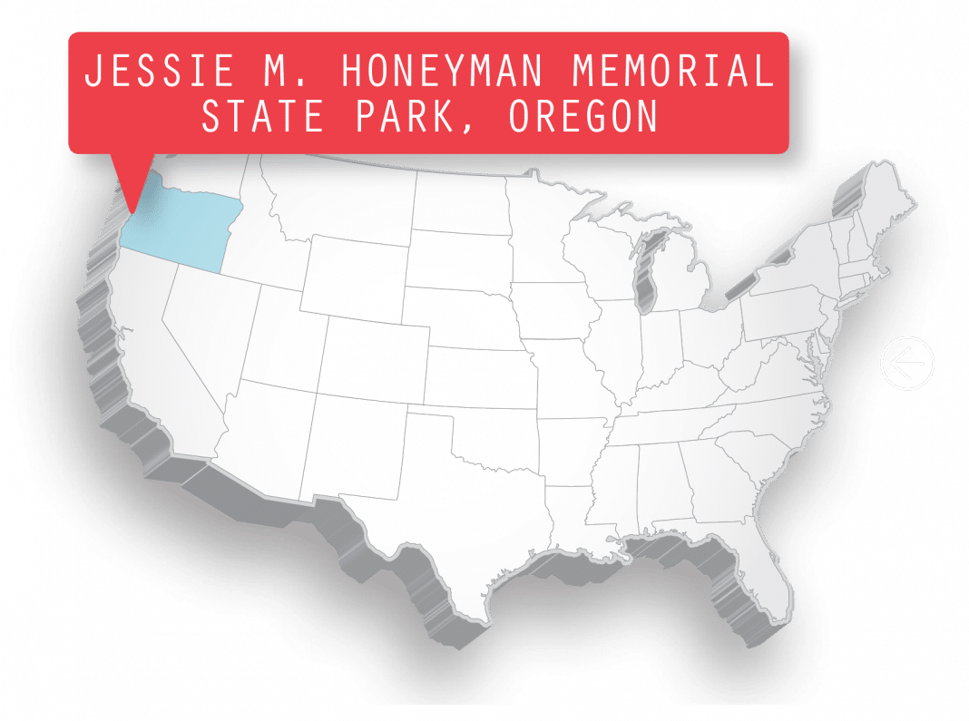 Getting There Jessie M. Honeyman Memorial State Park is located midway up the Oregon coast, 3 miles south of Florence. From Portland, take Interstate 405 South to Interstate 5 South. Merge onto Oregon Route 569 West, which eventually becomes Oregon Route 126 West. Turn left onto U.S. Highway 101 South and continue for about 3 miles until you reach Canary Road.