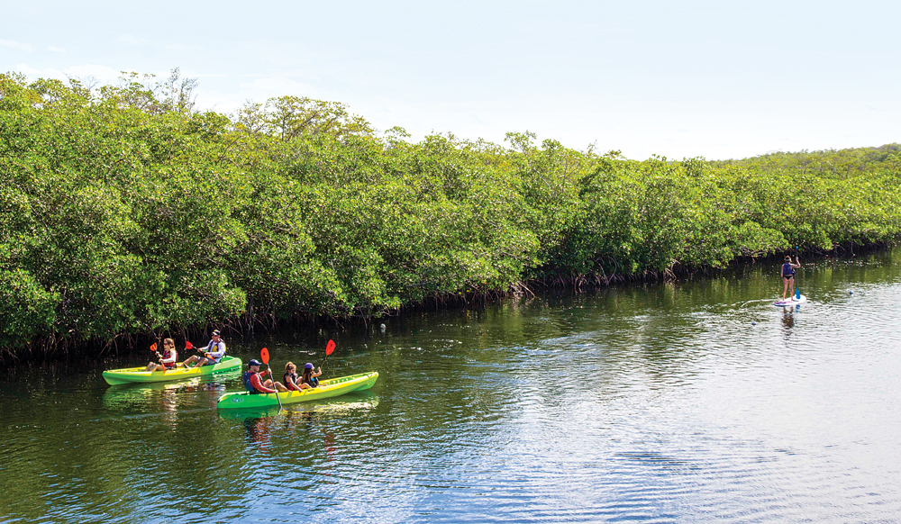 Paddlers explore the mangrove-laced waterways at John Pennekamp Coral Reef State Park.