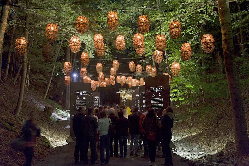 One of 11 illuminated zones in Foresta Lumina.