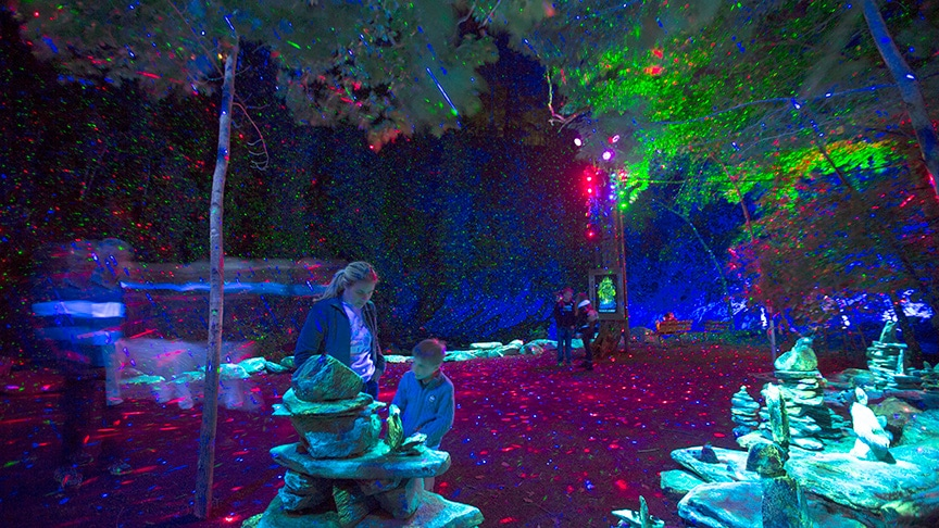 Foresta Lumina is a magical multimedia experience for all ages.