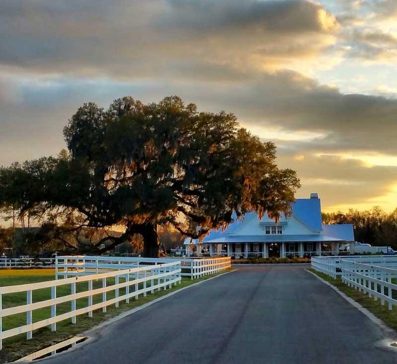 Creekfire Motor Ranch in Georgia
