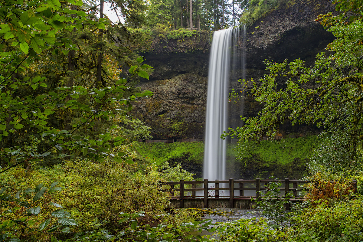 This beautiful 177 foot waterfalls is along the canyon rim in Silver Falls Park, Oregon.