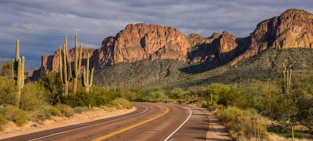 Bush Highway
