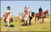 Four people riding horses on grassy area