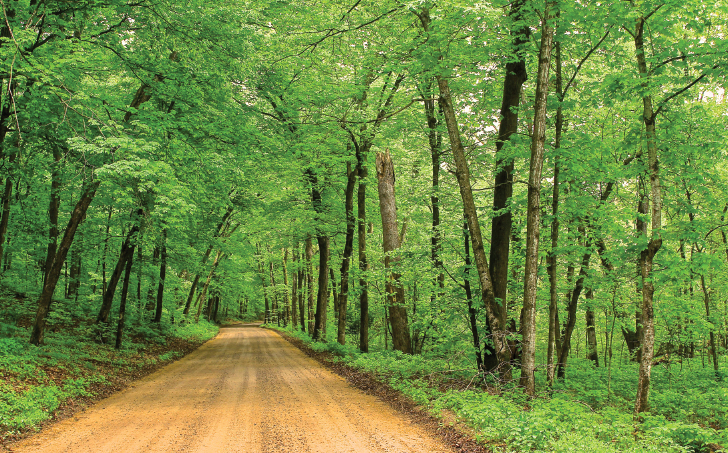 Access to the St. Croix National Scenic Riverway is through R-103's lush hardwood canopy (far left) and a short drive beyond the northern end of R-101, both of which parallel the waterway.