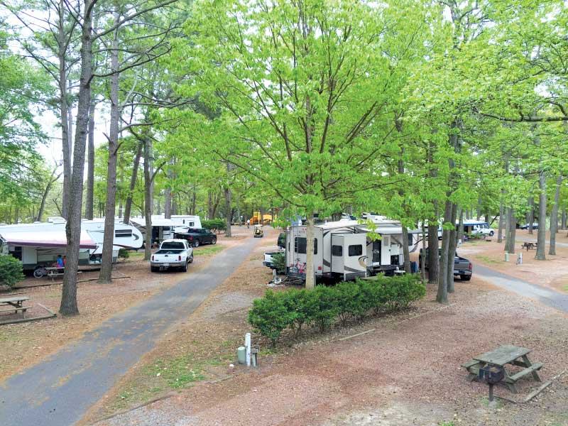 Whether you want to stay in the heart of the action or are seeking a rustic retreat, RV parks and public campgrounds are in ample supply in the Myrtle Beach area.