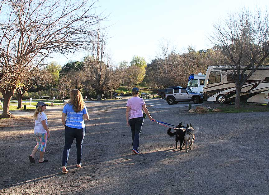 Three people walking two dogs at RV campground