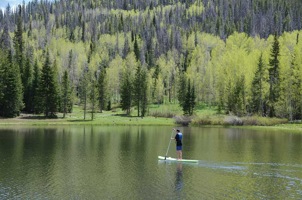 Stand-up paddlebaorder on a lake with forest in background