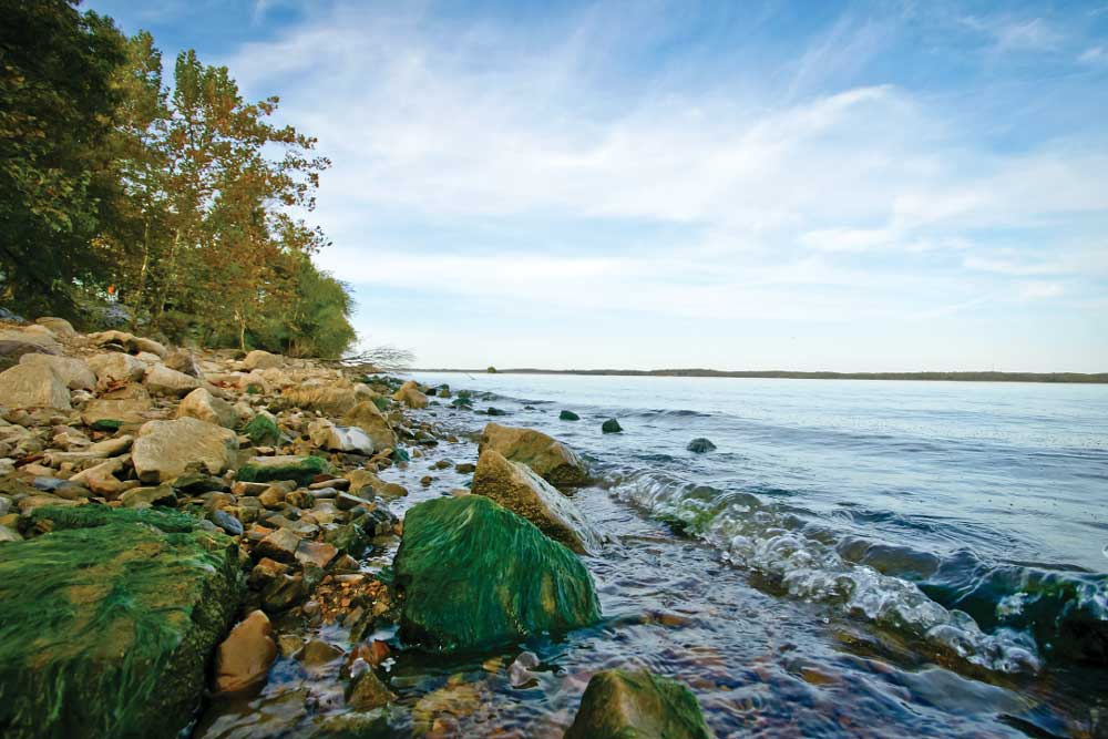 Photo of Lake Barkely, Tennessee shoreline