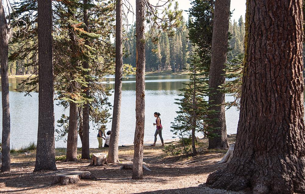 At 7,000 feet, Summit Lake ripples next to two of the park's most popular campgrounds.  The lake is a good spot to have a picnic and take a dip in the chilly water.