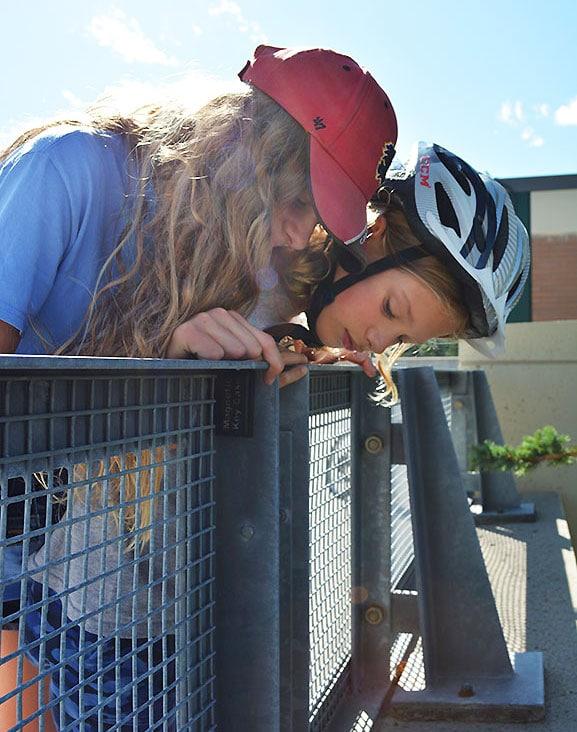 Two children find a hidden cache under a railing.