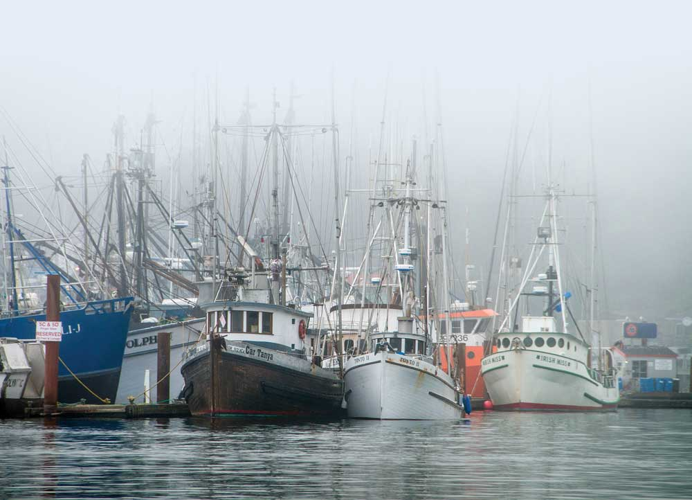 Newport Marina, Oregon, fishing boats are shrouded in fog and reflected in the harbor water