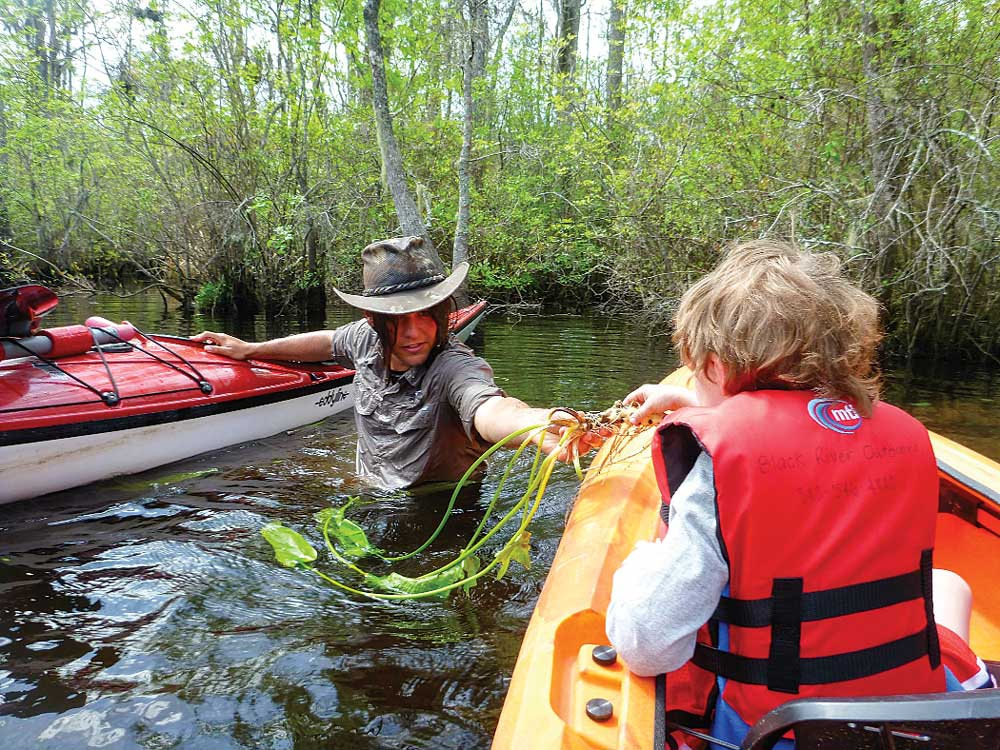 Nature guide standing in swamp pulling child on kayak