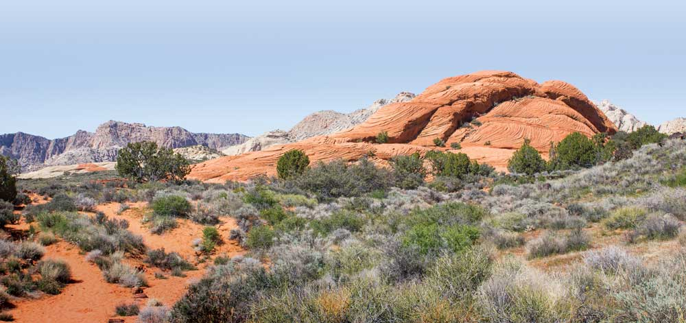 A red rock in the foreground is fr4amed by white rocks in the background at Snow Canyon State Park
