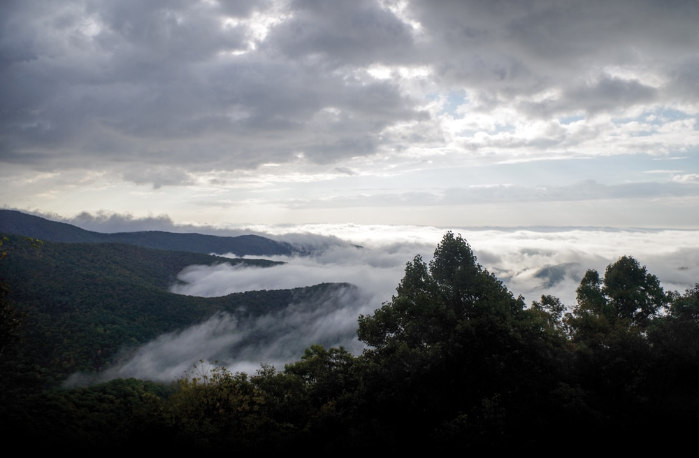 Great Smoky Mountains in mist