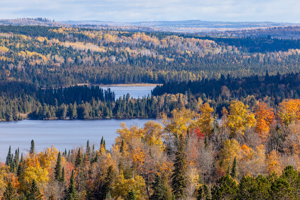 Superior-national-forest