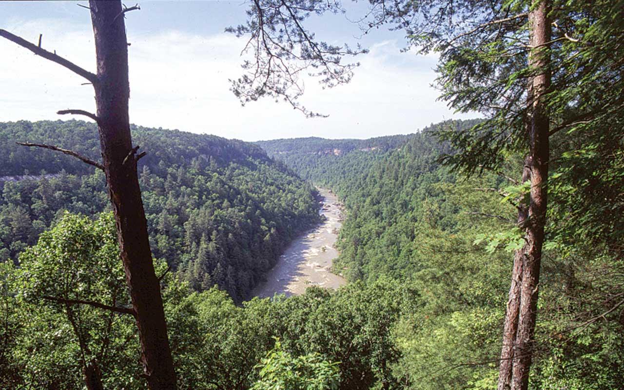 Honey Creek Overlook at Big South Fork