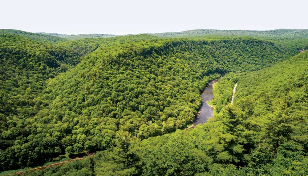Pennsylvania's Grand Canyon is a land of rugged beauty with large tracts of state forest and state parks.