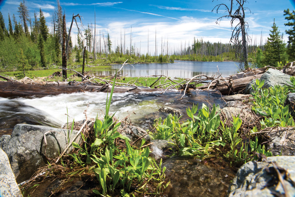 The lower of the Twin Lakes lures anglers with excellent trout fishing.