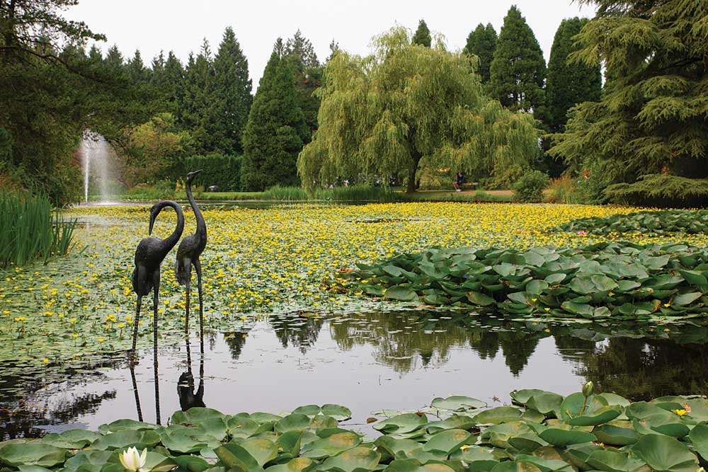 Vancouver's 55-acre VanDusen Botanical Garden has more than 7,500 plant species from around the world, with outdoor sculptures placed in various locations