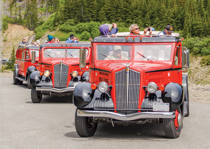 Vintage red buses in Glacier National Park on Going to the Sun Highway