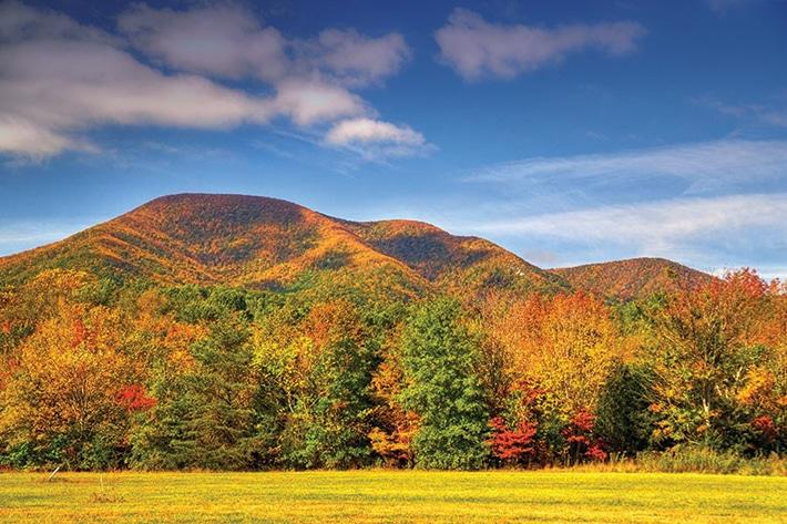 Virginia-Grounds-Foliage-photo-credit-Tommy-StaffordBlue-Ridge-Life-1