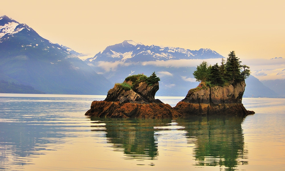 Prince William Sound, located on the east side of the Kenai Peninsula, encompasses 3,800 miles of coastline and is prized for its abundance of marine and coastal life.