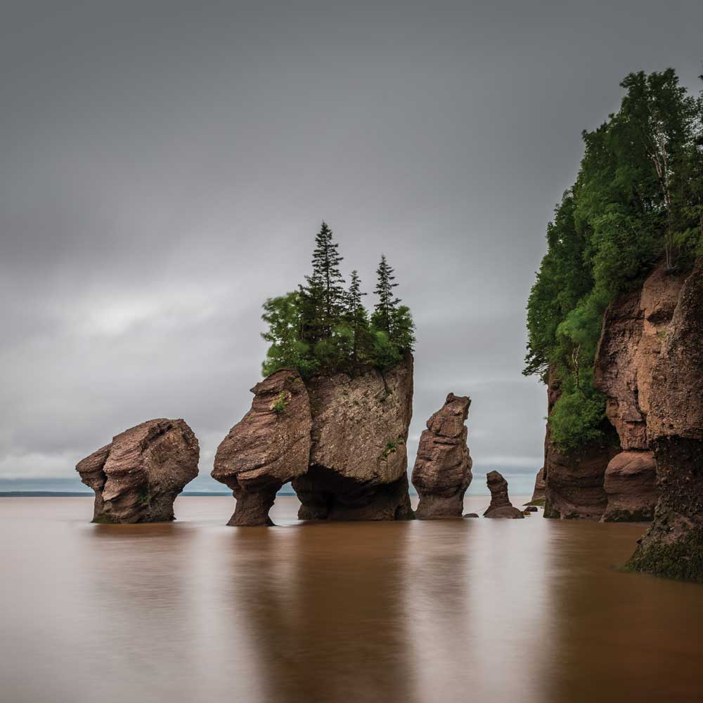 New Brunswick's Fundy National Park, home to the world's highest tides.