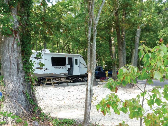 Seashore Campsites and RV Resort