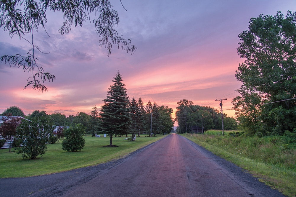 Sunrise casts a pink glow on a quiet country lane.
