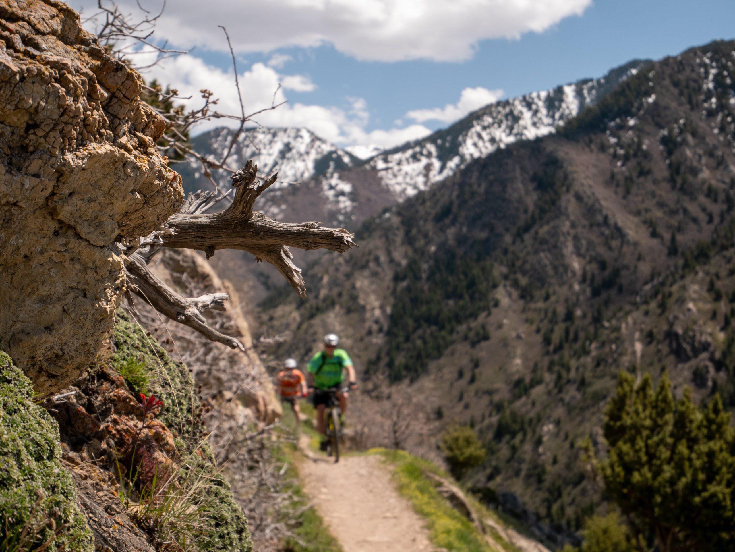 Two mountain bikers in distance on narrow Rattlesnake Gulch trail, Salt Lake City