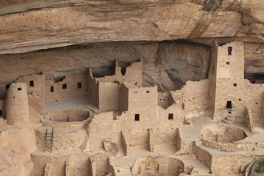 """The largest cliff dwelling in North America, Mesa Verde's Cliff Palace is housed in an alcove about 215 feet wide, 90 feet deep and 60 feet high. It was home to an estimated 100-120 people. Above the cliff overhang, on the surface of the mesa, is a red soil called loess. Spring windstorms bring this fertile soil from northeastern Arizona providing an environment that can support plants, including four types of wildflowers found nowhere else in the world. Mesa Verde means """"green table."""""""