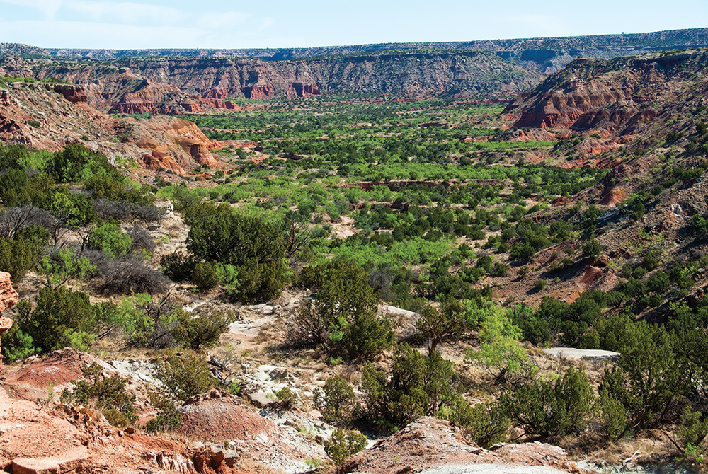 The South Prong area as viewed from Upper Canyon Trail.