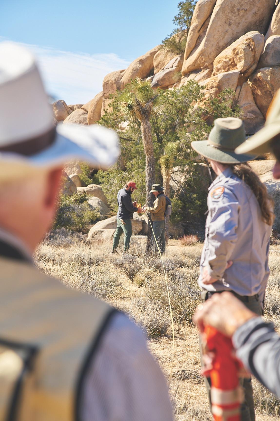 Joshua Tree Team Volunteer Trip