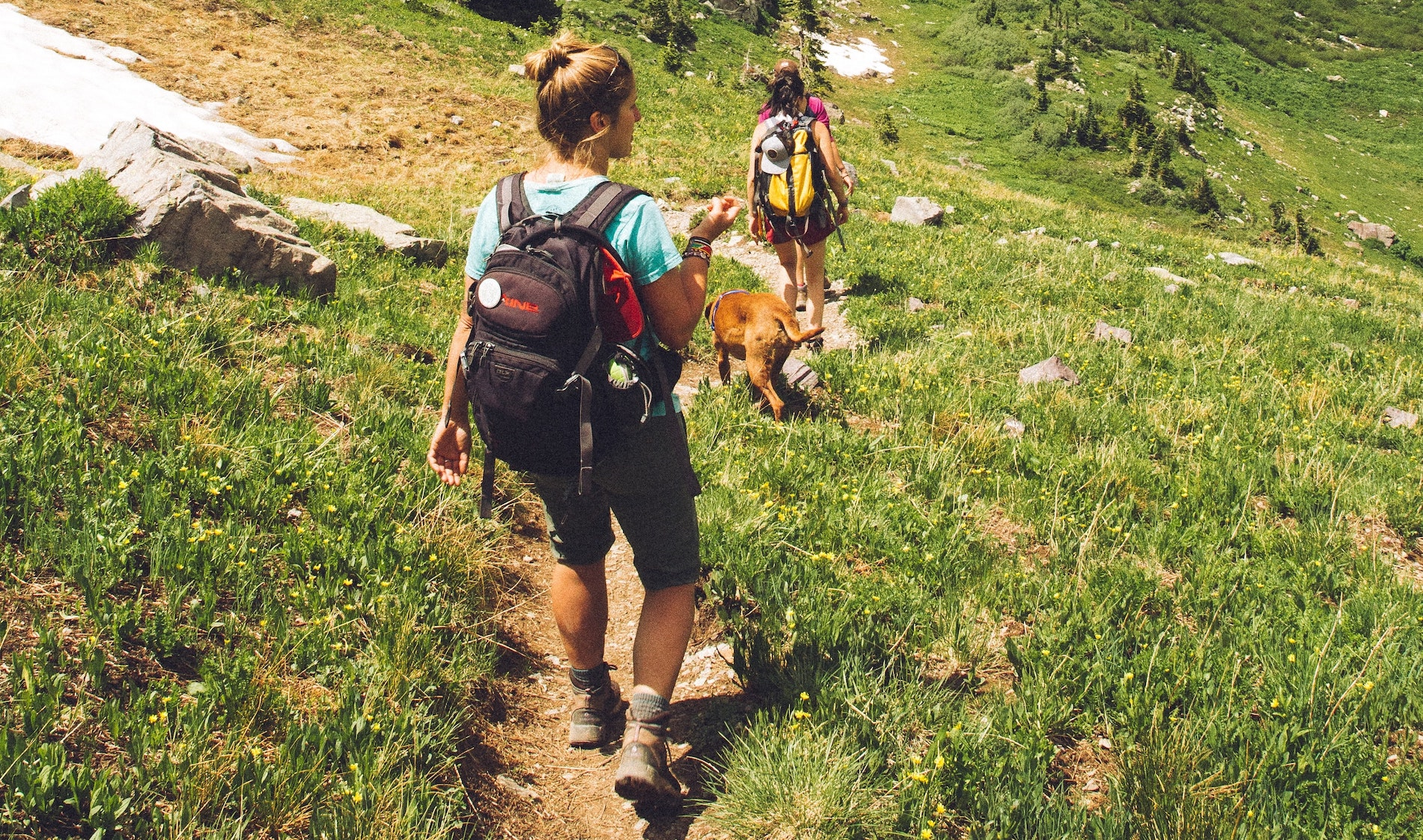 two girls hiking with their dog